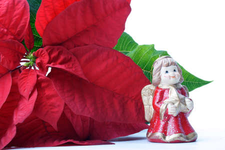 christmas flower and angel isolated on white Stock Photo - 282810