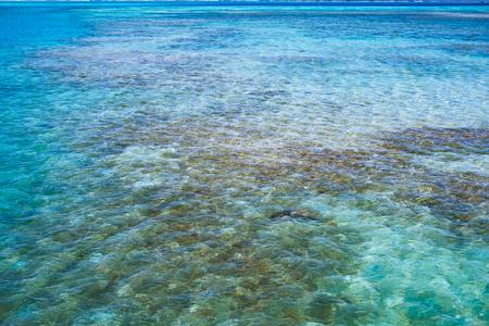 透明な水と沖縄のラグーンのサンゴ礁