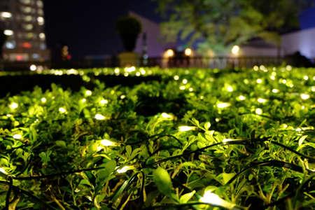 porch scene: Decorative christmas lighting equipments at night time Stock Photo