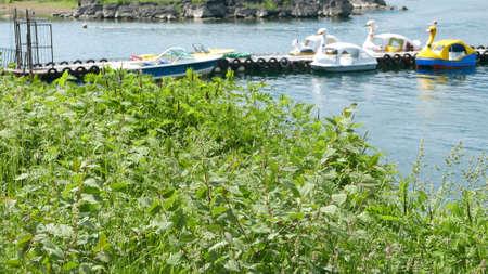 recreational: Recreational boats on the lake