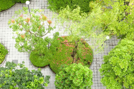 ourdoor: Green trees and street lamps in the garden from top angle Stock Photo