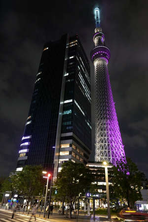 zebra crossing: Japan tower, residential houses and pedestrian zebra crossing at night