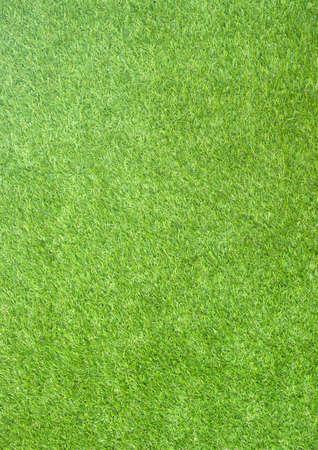 El fondo de papel de textura de campo de hierba verde natural vertical perfecta Foto de archivo