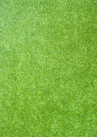 The seamless vertical natured green grass field texture paper background