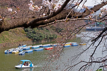 The Japan outdoor park river with colorful sight seeing boat in sunny day Banco de Imagens - 133134999
