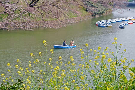 The Japan outdoor park river with colorful sight seeing boat in sunny day