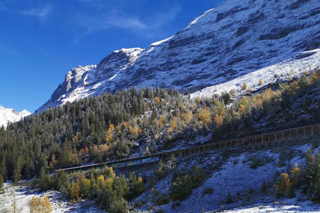 The Switzerland Grindelwald snow mountain with track of railway Banco de Imagens