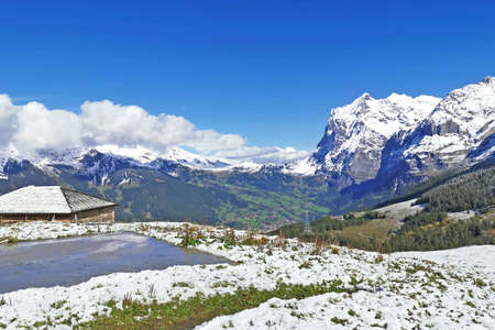 The peak of Switzerland Grindelwald snow mountain with cloud and wooden house