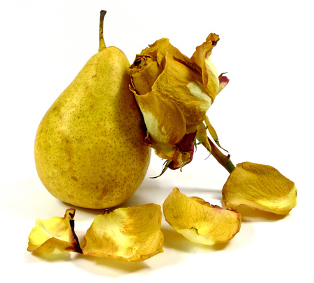 pear with wilted rose