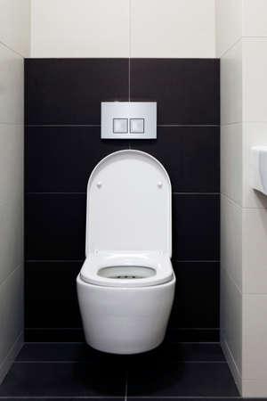 eclecticism: Modern bathroom interior details in cntemporary architecture
