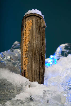 conserving: Scarce book on frozen ice in studio
