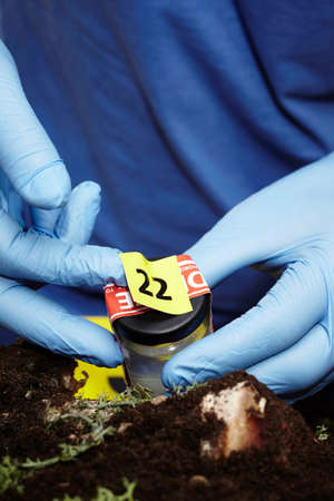 Collecting of fly larva on crime scene by criminologist