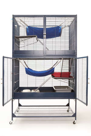 well equipped: Well equipped ferret home in two floor luxury cage on wheels Stock Photo