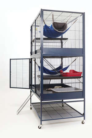 well equipped: Well equipped ferret home in two floor metal cage