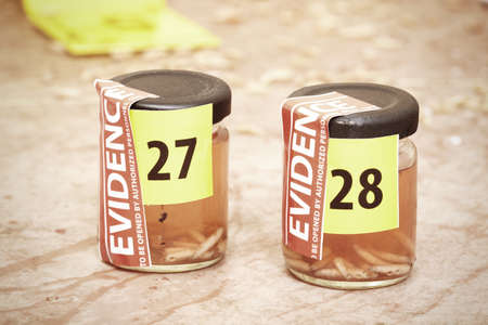 Collected fly larva on crime scene in glass bottles Stock Photo