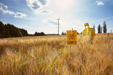Activist in protective suit protesting against genetically modified cereals on field Stock Photo
