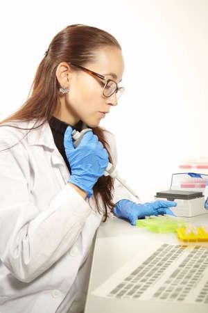 pcr: Criminologist lab technician preparing samples for PCR analysis reaction