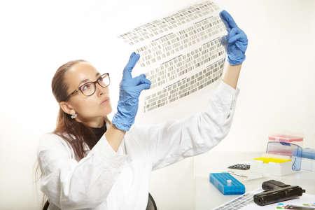 Un technicien de laboratoire criminologue lit un film avec un ADN analysé Banque d'images - 84433619