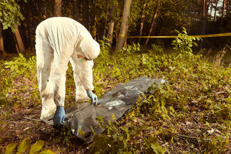 Collecting of human remains to plastic body bag by police technician for observing Stock Photo