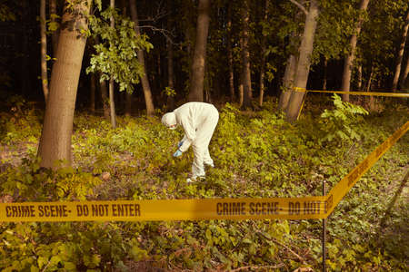 Older human remains found in forest - collecting of skeleton by police Reklamní fotografie