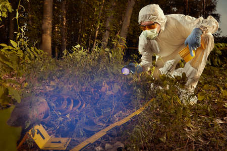 Human remains found in forest - checking of find by technician with UV light source Reklamní fotografie