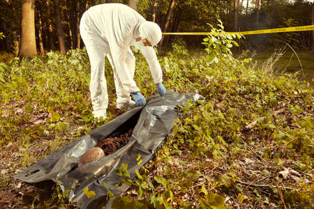 Collecting of human remains to plastic body bag by police technician for observing