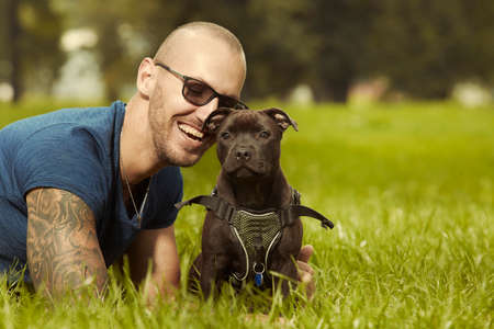 Three months old staffordshire bull terrier puppy with fitness muscle man