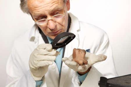 Museum specialist working with prehistorical artifact statue Stock fotó