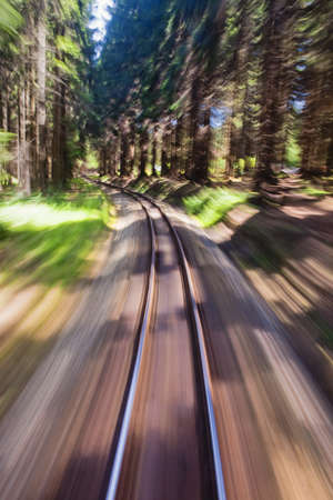 narrow gauge railways: View of narrow gauge railroad track from rear window of train riding through forest