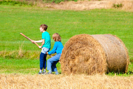 ingenuity: Two Boys Moving Bale of Hay with Stick as a Lever