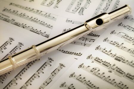 boehm flute: S�lido conjunto de cabeza de flauta plata