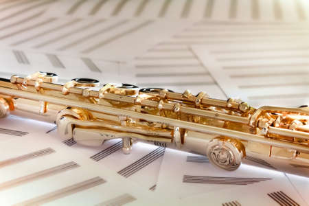 boehm flute: Oro flauta14 K aument� de oro