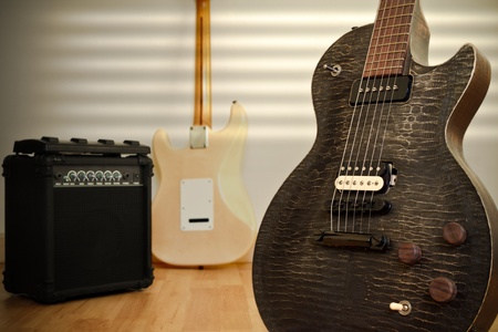Electris Guitars photo