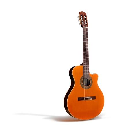断面図の古典的なアコースティック ギター全ボディ分離プロセス