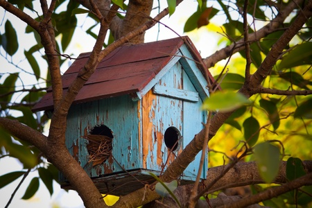 Birds Cottage  photo