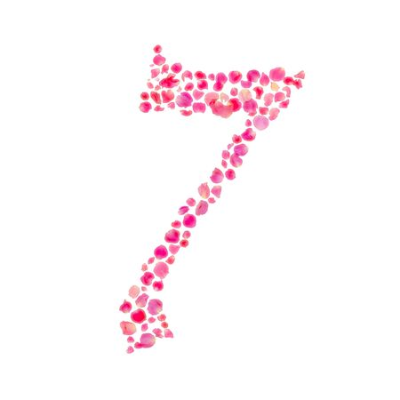 number seven: Number Seven Composed with Rose Leaves Isolated on White  Stock Photo