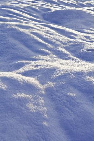 snowbound: winter snowbound plain