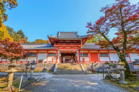 todaiji: NARA, JAPAN - NOVEMBER 16  Tamukeyama Hachimangu in Nara, Japan on November 16, 2013  Separated from Todaiji Temple in Meiji Period due to the separation of Buddhism and Shintoism