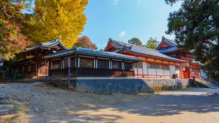 hachimangu:  Tamukeyama Hachimangu in Nara