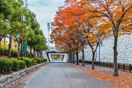 osakajo: Osaka castle park Stock Photo