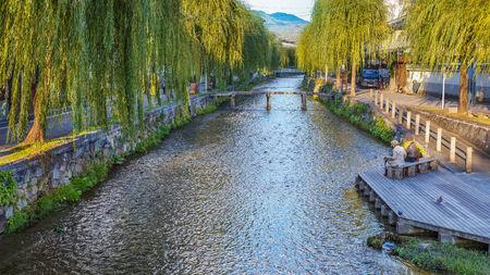 shirakawa: Shirakawa canal in Kyoto Stock Photo