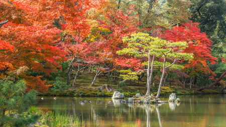 Kyoko-chi or Mirror Pond which contains 10 small islands at Kinkaku-ji temple in Kyoto Stock Photo - 26788733