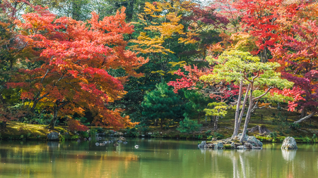 Kyoko-chi or Mirror Pond which contains 10 small islands at Kinkaku-ji temple in Kyoto    Stock Photo - 26808012