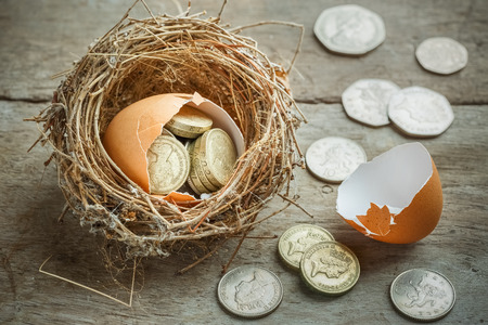 uk money: British Pound Coins with Bird Nest and Broken egg