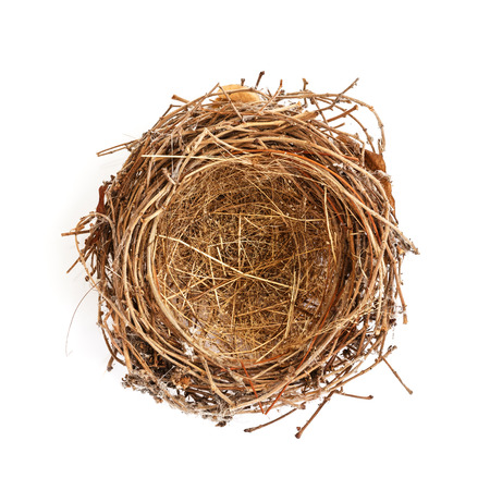 bird nest: Isolated Bird Nest On white Stock Photo