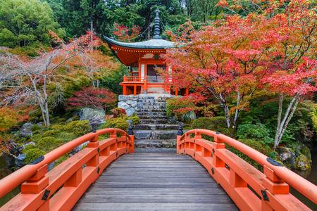 Autunno anticipato a Daigoji Tempio a Kyoto, in Giappone Archivio Fotografico - 33858814