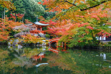 red maples: Early Autumn at Daigoji Temple in Kyoto, Japan