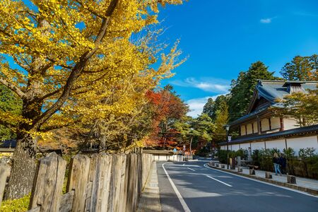 daito: The Road to Danjo Garan Temple in Mt. Koya Area in Wakayama, Japan Editorial