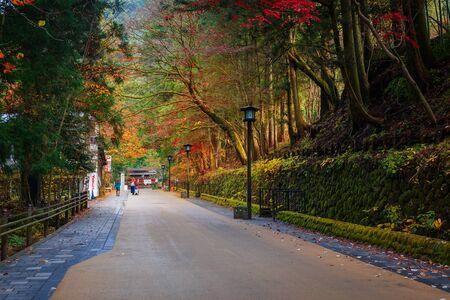 koyo: NIKKO, JAPAN - NOVEMBER 17, 2015: The Road to Taiyuinbyo Shrine and Futarasan-jinja Shrine in Nikko, Tochigi, Japan Editorial