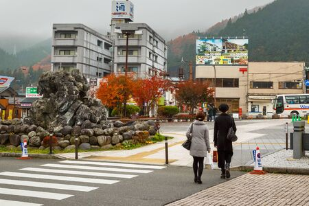lavishly: NIKKO, JAPAN - NOVEMBER 17, 2015: Nikko is a town at the entrance to Nikko National Park, most famous for Toshogu - most lavishly decorated shrine and the mausoleum of Tokugawa Ieyasu